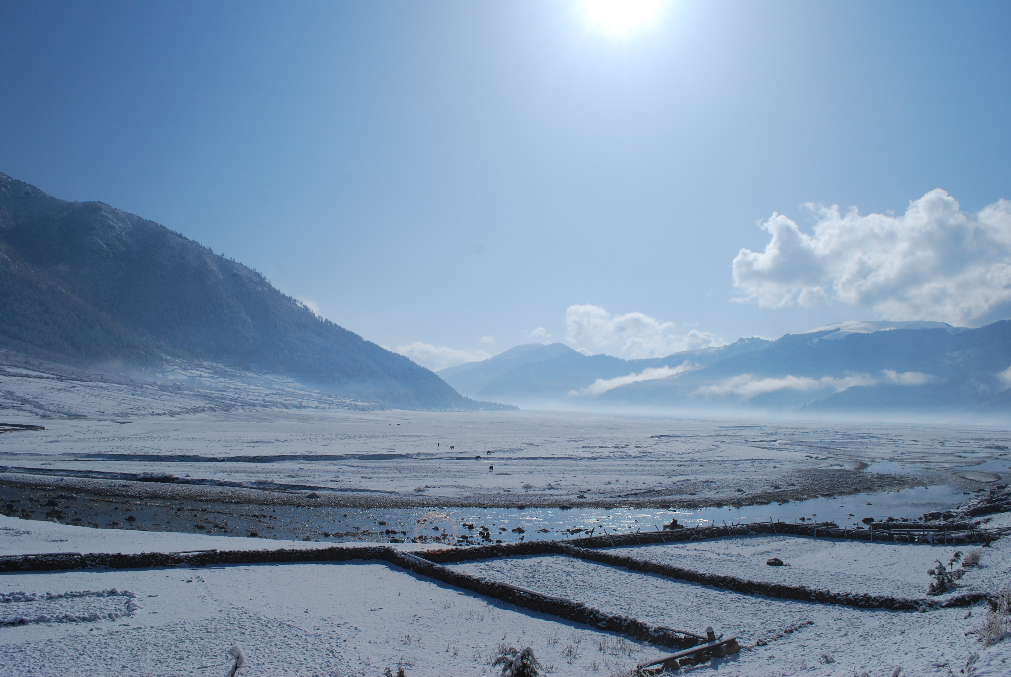 Dhorpatan filled with Snow